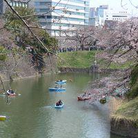 上京して来た息子と東京観光をしました。その3〜千鳥ヶ淵・武道館・靖国神社・九段下!!(*^O^*)