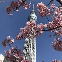 夫婦東京旅行