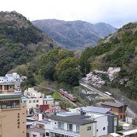 湯本富士屋ホテル(眺望)