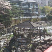 用事があって日帰りで修善寺に行ったついでに温泉に入ってきました!