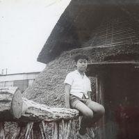 1966年(昭和41年)8月 家族(小学生6年)で静岡(三保の松原 日本平・久能山東照宮 登呂の遺跡)の旅