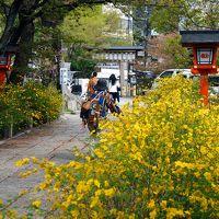 京都祇園四条〜縁切り神社・安井金比羅宮へ