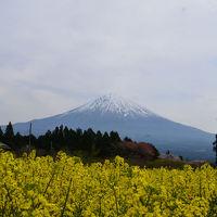 白糸自然公園&白糸の滝 2017.04.17