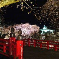 お〜見事!弘前城の夜桜ライトアップ!からの〜小さな城下町『黒石』散策