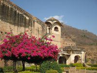 ラージャスターンと北インドの旅 (9)         ウダイプルからブーンディーへ。