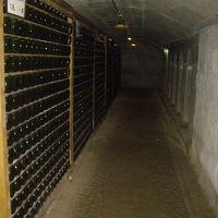 巨峰ワイン工場で果実酒を飲み食事を堪能して、原鶴温泉にて心身を癒す