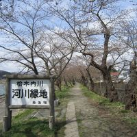 2017 桜旅 1日目 秋田  角館  武家屋敷 桜はまだまだでした