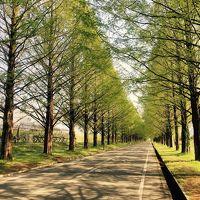 滋賀県への旅