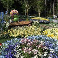 全国都市緑化よこはまフェア 里山ガーデン&みなとガーデン