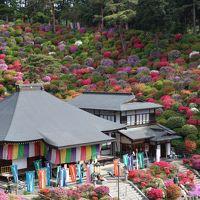 ブララブコー 「色鮮やかな躑躅にうっとり!塩船観音寺 & 御岳山・奥多摩ドライブ旅」
