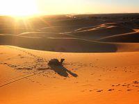 モロッコ サハラ砂漠/フェズ