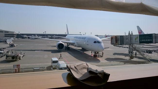 今回はマニラに再訪いたしました。気温38度の猛暑でした。<br />往路<br /> JL741 成田-マニラ(ニノイ・アキノ空港) 9:30?13:10 4時間40分<br />復路<br /> JL742 マニラ-成田 14:25?19:55 4時間30分<br />成田サクララウンジ利用<br />ニノイアキノ空港カンタスラウンジ利用