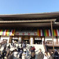 成田山新勝寺へ遅い初詣に行ってみた