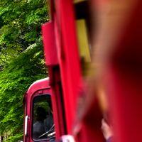 新緑の保津峡の中を走る嵯峨野トロッコ列車に乗って