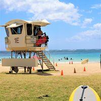 JALで行くハワイ♪アラモアナから半径500mのお出かけ