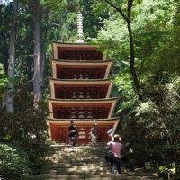 170529-30奈良家族旅行【3】五重塔と美仏を巡る 〜室生寺そして興福寺〜