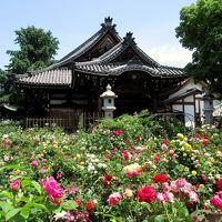 橿原の寺社と唐招提寺へ