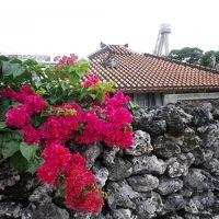 初沖縄は八重山諸島巡り 3日目沖縄の原風景 竹富島を散策