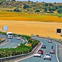 Spain31 ミハス⇒セビリア 車窓風景 230km余/3時間半で ☆オリーブの主要産地