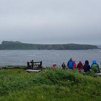 利尻・礼文島 花花ハイキング4日間(28) 礼文島 スコトン岬で自由散策後、宿へ戻りました。
