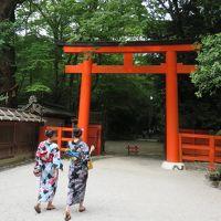 京都で沢山見た着物姿!建物内の文化的展示は撮影不可ばかり!!!世界でも珍しい町。。。