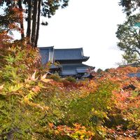 出張ついでに京都観光(嵐山、東福寺、伏見稲荷大社)