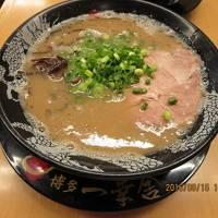 西日本旅行 後編−1 福岡近郊の街 八女市・朝倉市・うきは市