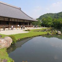 京都の旅4日目(23日)はベストの天龍寺のみをまず紹介。