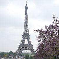 華のパリざんす☆夢のシャンゼリゼ、トロカデロからエッフェル塔、オランジュリーでモネ! 新緑のドイツ・フランスの旅3