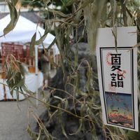 薬研堀不動院、鳥越神社、東本願寺、浅草寺、夏詣の浅草神社で季節限定御朱印をいただく。