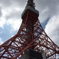 東京、横浜JALびっくりオプションで東京タワー、アクア品川水族館
