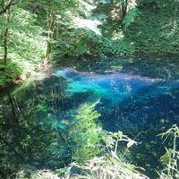 青森の青池ブルーと材木界の迎賓館