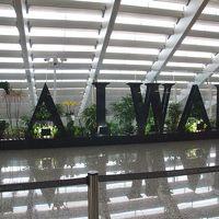 初★台湾 �