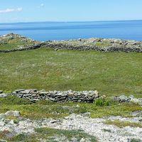 仕事人への瞬間観光案内、、、カナダニューファンドランド、、2時間あったらグレーツコーブ石壁遺跡見れるかな?