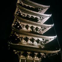 奈良の世界遺産巡り(興福寺〜東大寺(今回初公開大湯屋)〜唐招提寺)