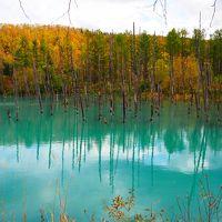 2017年10月  秋の北海道  〜 青い池と白ひげの滝、東川町「ニセウコロコロ」、紅葉の層雲峡と日帰り温泉