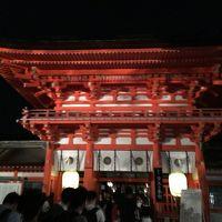 蛍火の茶会♪下鴨神社