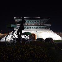 眠気が止まらない!大韓航空羽田発深夜便で真夏のソウルに行ってきました2!東大門でタッカンマリ