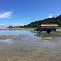 四十路女のひとり旅 in 西表島