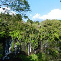 日本一美しい潜流瀑『白糸の滝』に再訪◆2016年4月/静岡&山梨で富士山を愛でる旅《その5》