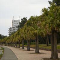 初めての宮崎県 青島 観光