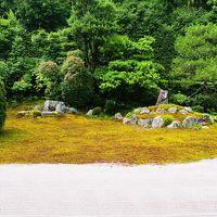 東福寺の塔頭  芬陀院で雪舟が造ったとされる鶴亀の庭を楽しむ