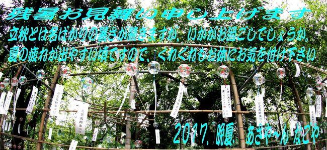 今年は例年になく、毎日暑い日が続きますね、名古屋の栄、若宮大通り沿いにある神社「若宮八幡社」。<br />ここの境内に願い事を書いた風鈴がたくさん吊るされるという、「風鈴まつり」が7/1~8/31まで開催されています。<br />