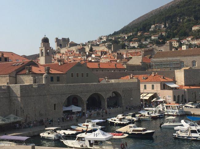 小2の長男とクロアチアに寄港しました。