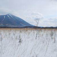 雪の戦場ヶ原トレッキング