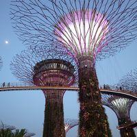 パスポート紛失で大パニック!キャセイパシフィックのフライトとラウンジを楽しむシンガポールの旅 1日目・2日目