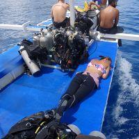 駐在のついでに 【その46】 フィリピン遠征� エルニド2日目、1年2ヶ月ぶりのダイビング。ランチ&3本目@Nat Nat!