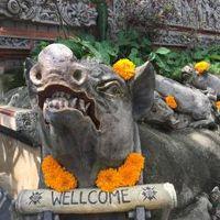 3度目のバリ島・DISINI(ディシニ)Villasでの夏休み�〜クラクラバスでウブド日帰り。バビグリン(豚の丸焼き)に初挑戦〜