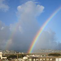 2017 夏休みのハワイ3 たった1泊でくるっと周るオアフ島