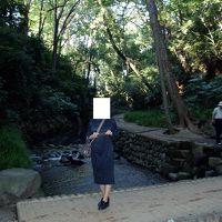 2004年(平成16年)10月 世田谷美術館「ヨルダン展」 二子玉川 素晴らしい等々力渓谷・不動尊 自由が丘に訪問します。